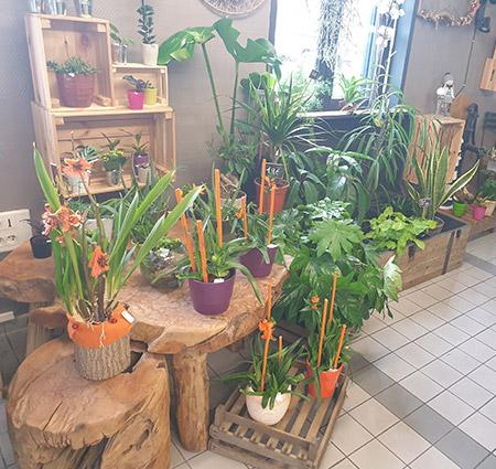 Magasin de fleurs à Wattignies