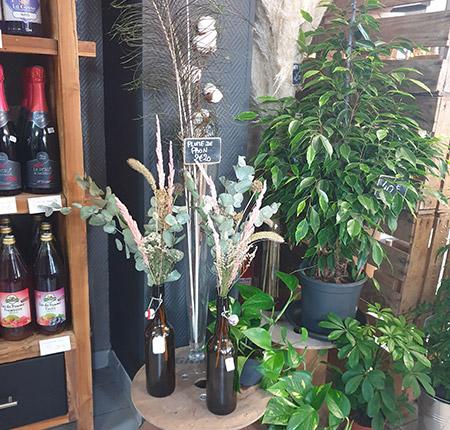 Vente de plantes d'extérieur à Seclin et Wattignies